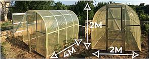 Теплица «Омега» 2 × 4  усиленная из оцинкованного омега профиля с пленкой 120 мкм