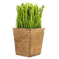 Искусственное растение куст, Трава в картонной коробке, зеленый, 15 см, пластик (960330)