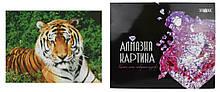 Алмазна картина FA10046 «Погляд тигра», розміром 40х50 см