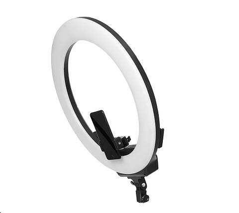 Світлодіодна кільцева лампа AFI R219 48см, фото 2