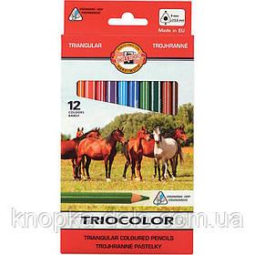 """Карандаши цветные 3142 TRIOCOLOR Jumbo """"Horses"""" , 12 цветов. Картонная упаковка."""