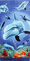 Пляжное полотенце Дельфины и корлы