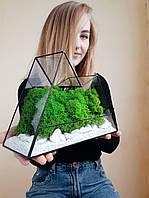 Флорариум Моссариум со стабилизированным мхом горы. Моссариум в подарок. Кашпо в форме гор. Моссариум в офис.