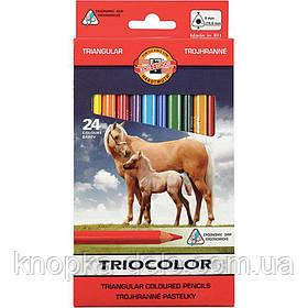 """Карандаши цветные 3144 TRIOCOLOR Jumbo """"Horses"""" , 24 цвета. Картонная упаковка."""