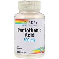 Solaray, Пантотеновая кислота, 500 мг, 100 вегетарианских капсул