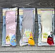 Дитячі колготи бавовна KBS з малюнком сови зайчика сонечка  для дівчаток 0,3 років 6 шт в уп мікс, фото 4