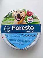 Форесто Foresto ошейник от блох и клещей для собак 70 см более 8 кг, Bayer