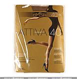 Колготки женские Omsa Attiva 40 den ОПТ, все размеры, все цвета, колготки Golden lady, фото 2