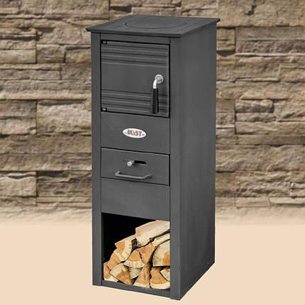 Чугунная печь-камин Blist Ekonomik N 7 кВт печи отопительно варочные для дома и дачи, фото 2