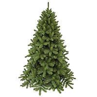 Сосна 3,65 м Scandia зелена