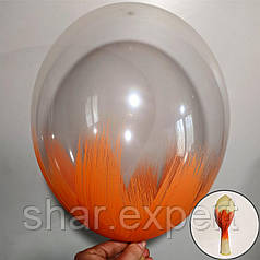 Оранжевый на Прозрачных латексных шарах