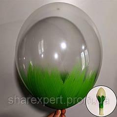 Зелёный на Прозрачных латексных шарах