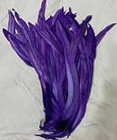 Пір'я півня Натуральні Декоративне перо Колір Фіолетовий 22-30см, фото 2