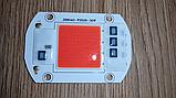 №56 Фито Светодиод 30 ватт 220В Smart IC led 30w 220v полный фитоспектр фито для растений 1.5 мм., фото 2