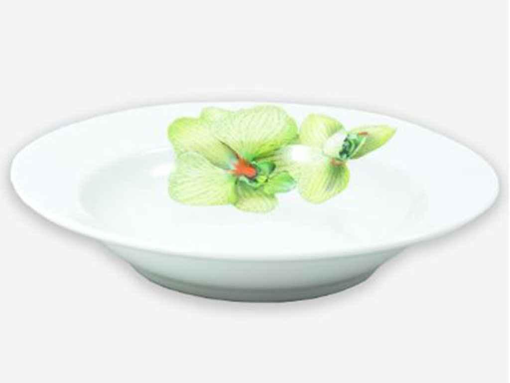 Тарелка суповая ДФЗ Орхидея d=200 мм (04075)