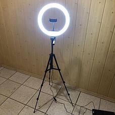 Набор для блогера 5 в 1 кольцевая лампа 33 см со штативом на 1м лампа для селфи лампа для тик тока, фото 2