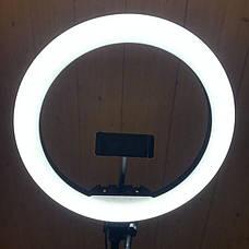 Набор для блогера 5 в 1 кольцевая лампа 33 см со штативом на 1м лампа для селфи лампа для тик тока, фото 3