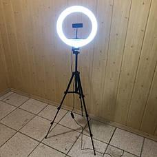 Набор для блогера 5 в 1 кольцевая лампа 30 см со штативом на 1м  лампа для селфи лампа для тик тока, фото 2