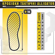 Кросівки тактичні Alligator 30802005 Coyote, фото 2