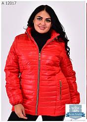 Женские демисезонные куртки больших размеров 54-70