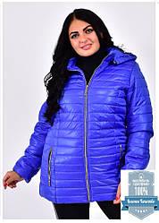 Демиезонные женские куртки с капюшоном яркие размер 54-70