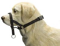 Поводок для дрессировки собак Pet Pro Дог Контроль, нейлоновый