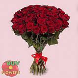 Роза темно бордовая Гран При 40 - 110 см, фото 3