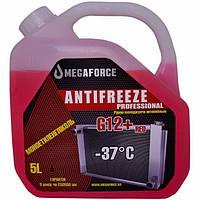 Антифриз: ANTIFREEZE PROFESSIONAL red G12+, 5 л