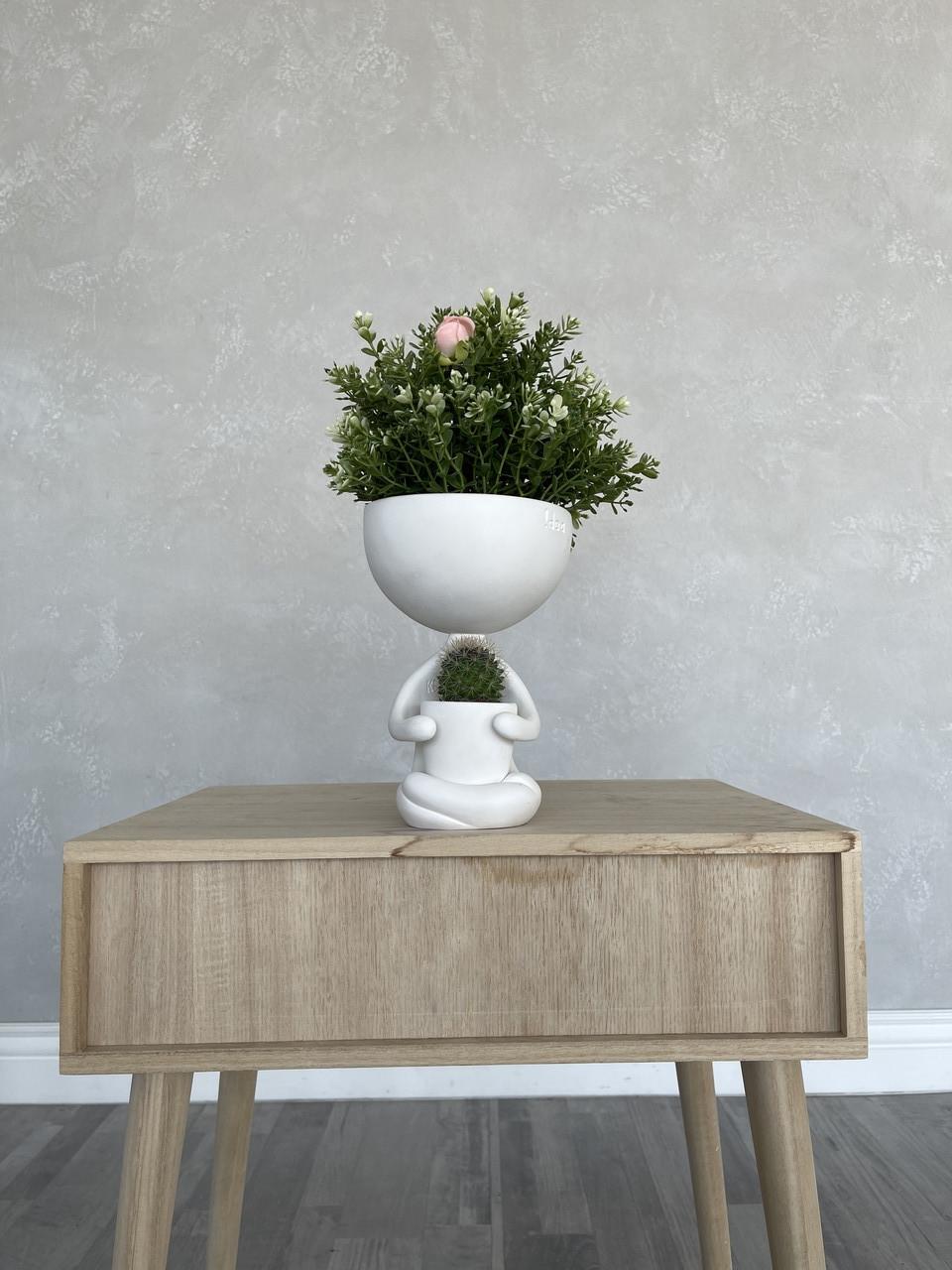 Декоративное Кашпо Kelly Girl с живыми растениями К1