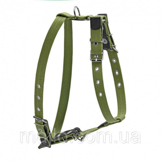 0647 Шлея CoLLaR брезент зелений х/б тасьма з світловідбиваючої ниткою для великих собак (35мм, шия 72-94 см,