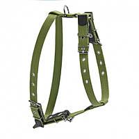 0647  Шлея CoLLaR брезент зеленый х/б тесьма со светоотражающей нитью для крупных собак (35мм, шея 72-94 см,