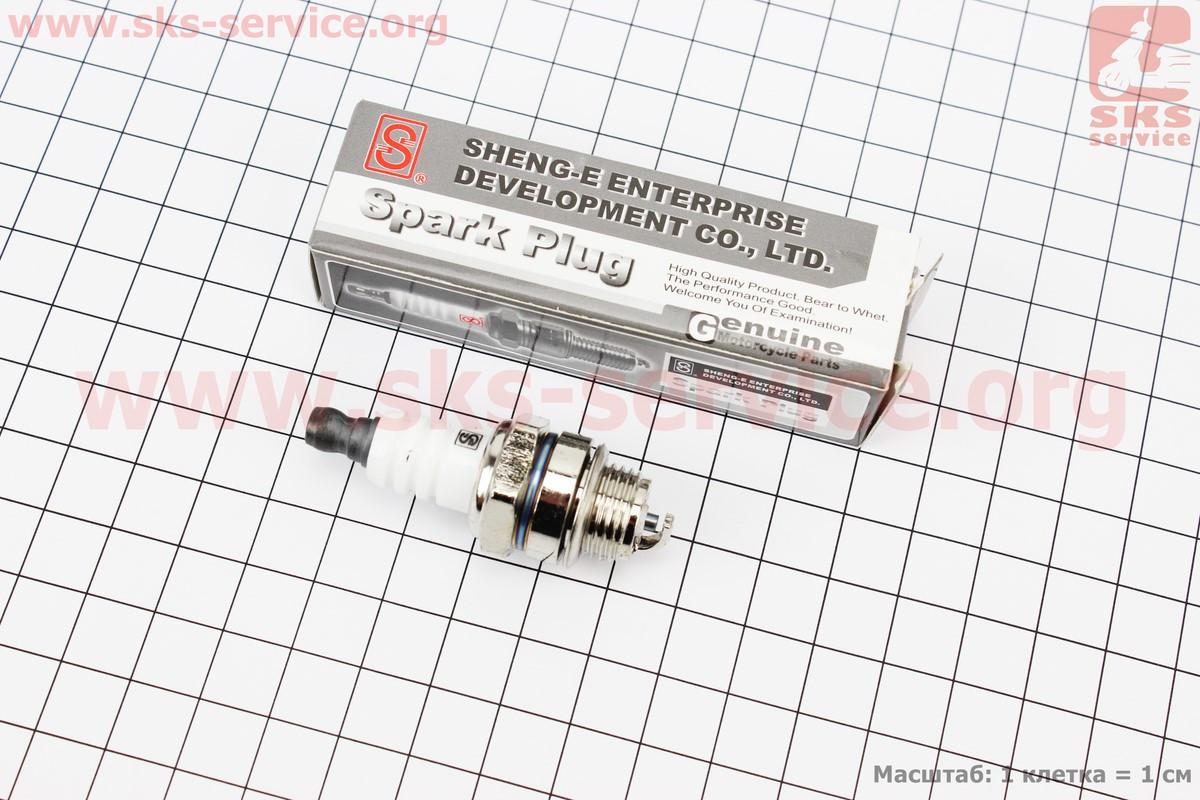 Свічка 2T L6TC - M14 L8 - пили/коси (201384)