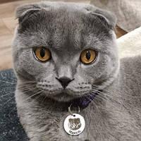 Адресник з гравіюванням з фото кулон для кішок жетон