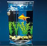 Аквариум для рыбок самоочищающийся, аквариум для рыб, мини аквариум, маленький аквариум My Fun Fish, фото 3