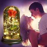 Стабілізована ТРОЯНДА В КОЛБІ З LED ПІДСВІЧУВАННЯМ, нічник, вічна троянда, 17 СМ Найкращий подарунок!, фото 6