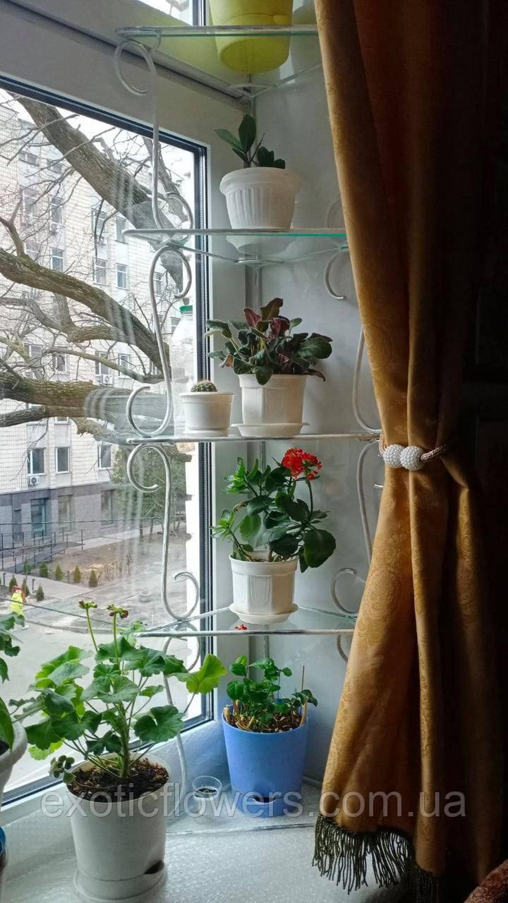 """Подставка для цветов на 4 полки """"Стеллаж оконный Яна-1"""""""