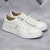 Мужские кожаные кроссовки Adidas Stan Smith Белые
