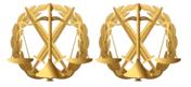 Емблема Пластик Юридична служба та спеціалісти цивільно-військового співробітництва, фото 2