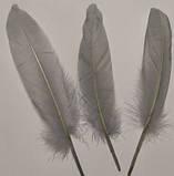 Пір'я гусака Декоративне перо Колір Сірий 13-20см, фото 9