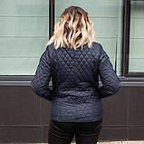Демісезонна коротка куртка-жакет великих розмірів ArDi, темно-синій, фото 2