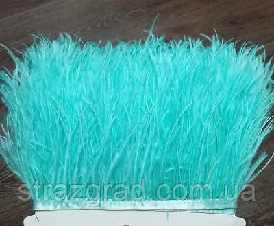 Пір'яна тасьма з пір'я Страуса Колір М'ятно блакитний Перо 9-15с Ціна за 0,5 м