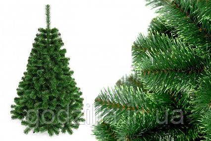 """Елка """"Польско-канадская зеленая"""" на пластиковой подставке + гирлянда в подарок"""