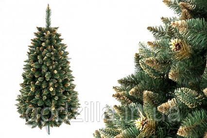 """Сосна """"Золотая гора"""" на пластиковой подставке + гирлянда в подарок"""