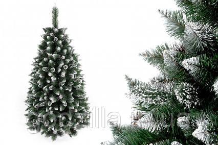 """Сосна """"Серебряная гора"""" на пластиковой подставке + гирлянда в подарок"""