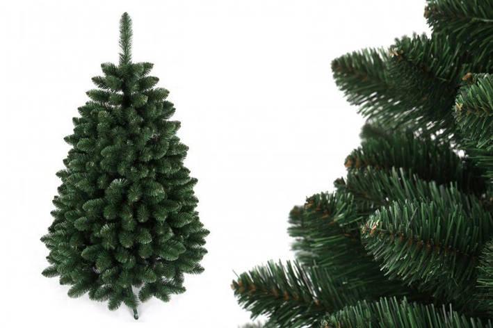 """Сосна """"Сибірський ананас"""" на пластиковій підставці + гірлянда у подарунок, фото 2"""