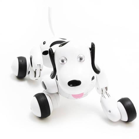Интерактивная собака SMART-DOG wi-fi, фото 2
