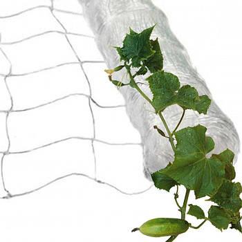 Сітка шпалерна огіркова 1,7х3м біла ZRостай 14х14см осередок