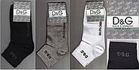 """Мужские носки демисезонные """"D&G"""" 40-44 размер НМД-189"""