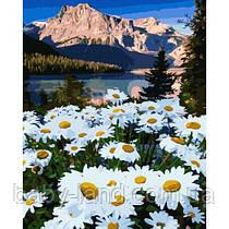 "Картина по номерам. Rainbow Art ""Альпийские ромашки"" GX39413-RA"