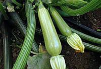 Кабачок Сцилли F1 Seminis 1000 семян